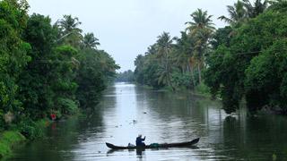 Backwaters d'Alappuzha 14