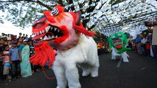 Carnaval de Cochin -4