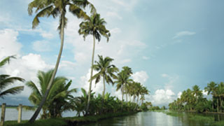 Endless backwaters of Alappuzha