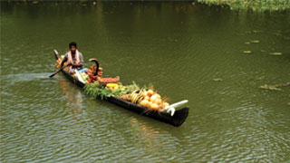 Farmer on Country boat