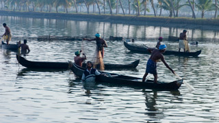 Fishing activities, Ernakulam