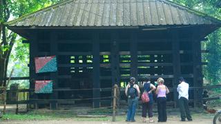 Camp d'éléphants à Kodanad - 3