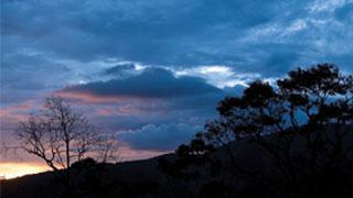 Nelliyampathy hills, Palakkad