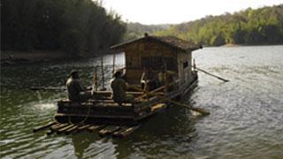 القوارب النهرية، بارامبيكولام