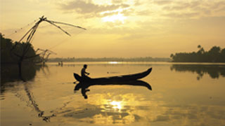 Serene backwaters of Kumbalangi