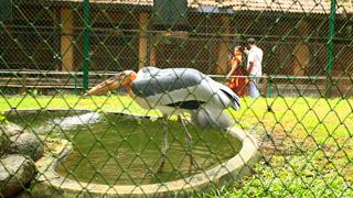 तृश्शूर चिड़ियाघर -2