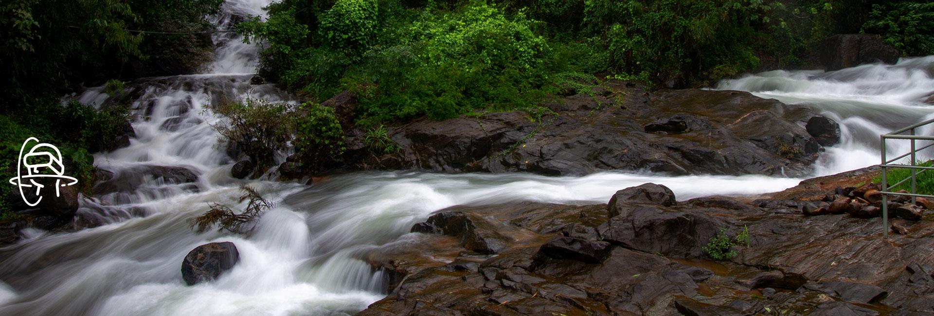 Virtual Kerala Experience