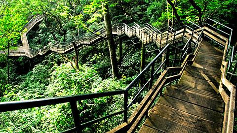 وجهة ثينمالا للسياحة البيئية في كولام