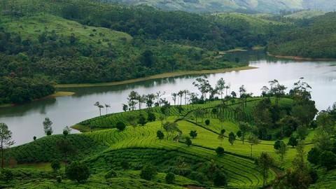 ಮುನ್ನಾರ್