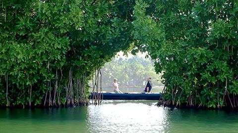 Остров Мунро в Колламе