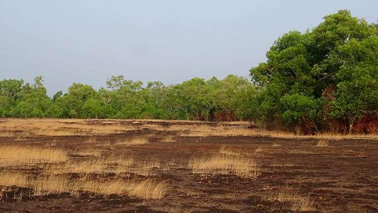 Veeramala Hill, Cheruvathur