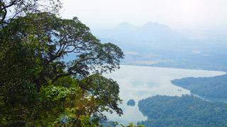 Pothundy Dam, Palakkad