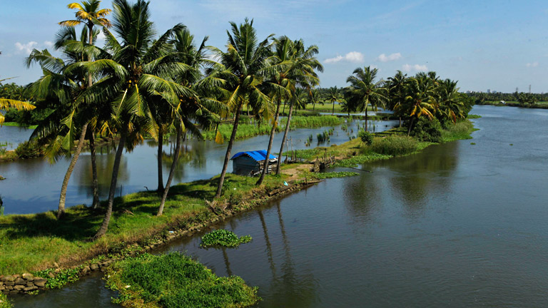 Some other must sees / must feels of Kochi