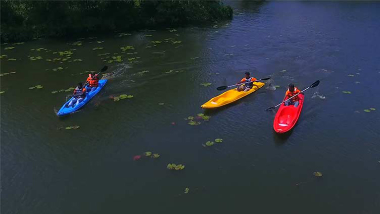 Things to do at Wayanad