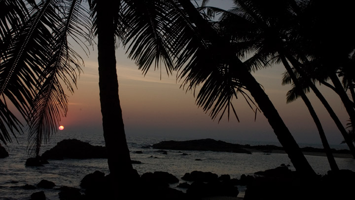 Palm-fringed beaches of Kerala