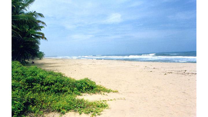 Payyoli Beach in Kozhikode
