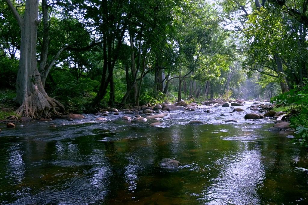 Pambar River, Kerala