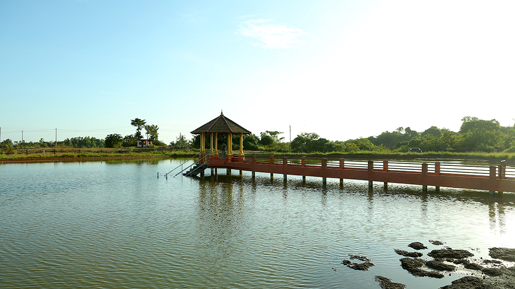 The pond of turtles – Aamakkulam