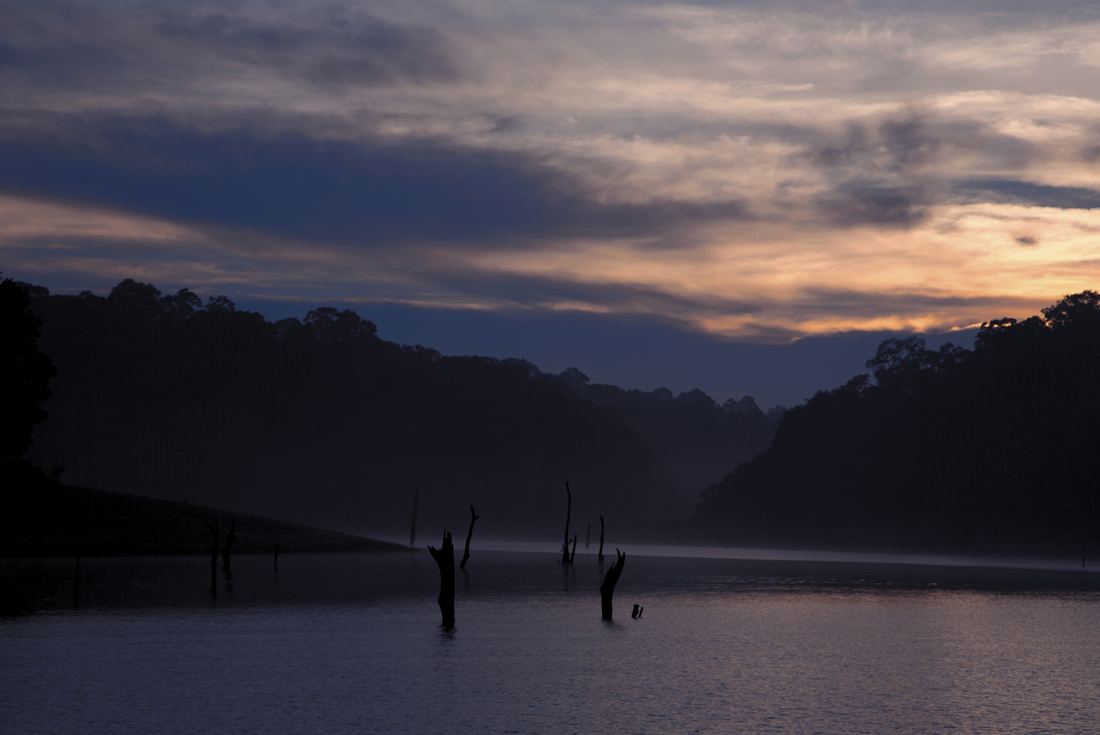 Thekkady - a picture-perfect destination