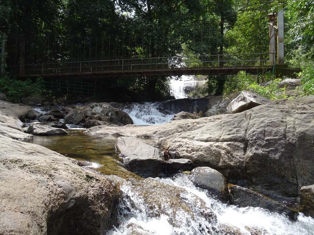 Thusharagiri falls and the trekking | Thusharagiri