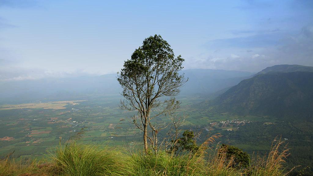 Valiyapara view-point