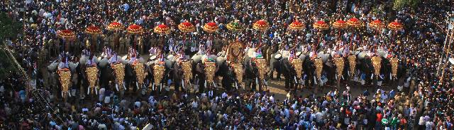 Elephant Pageantry, Thrissur Pooram