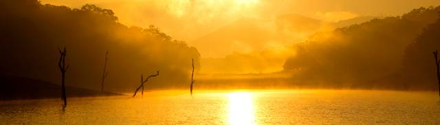 Golden rays at Periyar Lake