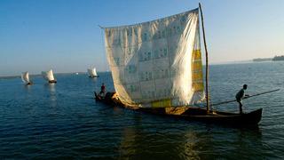 Une flottille de backwater