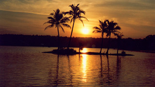 Kottappuram Backwaters Image