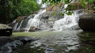 Водопады Арувиккужи, Коттаям