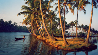 Ashtamudi Backwaters in Kollam