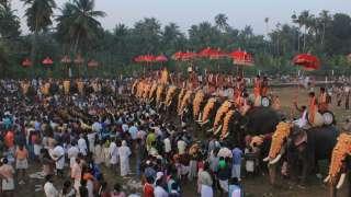 Elephants at Arattupuzha Pooram