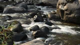 Gushing waters of Adyanpara falls   Nedumkayam