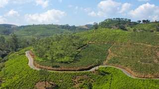 Munnar, the Green Enchantress