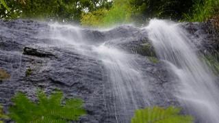 Pampanal Waterfalls, Kottayam