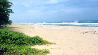 Payyoli Beach in Kozhikode