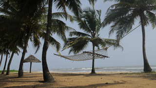 Sandy shores of Kerala beaches