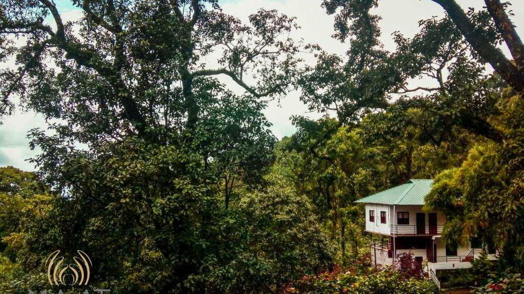 Spice Jungle | Where to Stay | Kerala Tourism