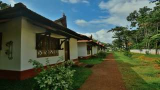 Click here to view the details of Palm Grove Lake Resort
