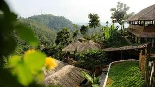 ecotones camps Munnar