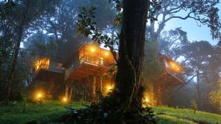 Click here to view the details of Nature Zone Jungle Resort