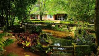 Click here to view the details of Falling Waters