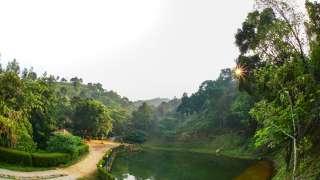 Rain Country Resorts
