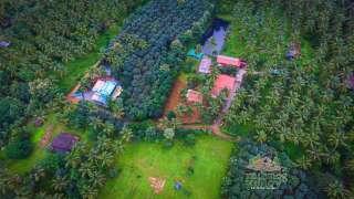 Nutmeg Valley
