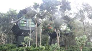 Click here to view the details of Changathi resorts and tree houses