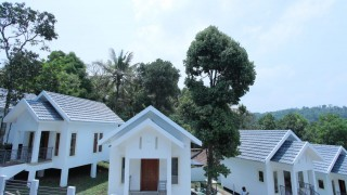 Click here to view the details of Bambusa Cottages