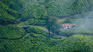 Shooting Locations in Munnar