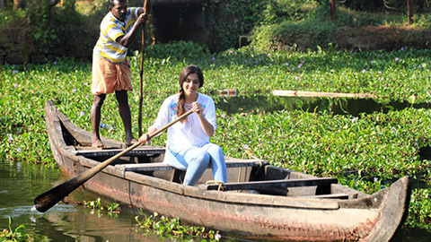 Beyond the Backwaters