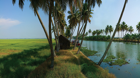 Get a Flavour of Rural Life