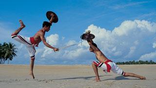 Kalaripayattu Martial Artform